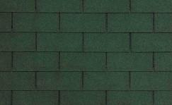 CT-20-Evergreen-Blend